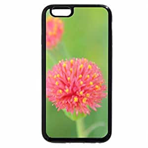 iPhone 6S / iPhone 6 Case (Black) Wild Flower