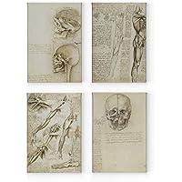 NNNNNNOOO, The Nature of The Human by Leonardo da Vinci, 4 Pannelli, Stampa su Tela, Riproduzione di opere d'Arte, Arte per la casa, Allungata, 40 x 30 cm