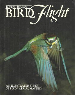 Bird Flight: An Illustrated Study of Birds' Aerial Mastery