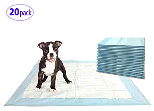 Cheap Clean Companion Absorbent Training Pad (20 Count)