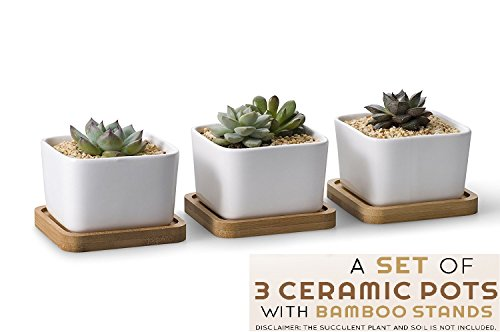 PuroKraft Succulent Pots with an e-book on Succulent Care - 3.6 inch Ceramic Plants Holder - Mini Flower Pots - Unique White Square Container With Bamboo Tray (Set Of 3) - Garden Pots For Gifts By (Succulents Care)