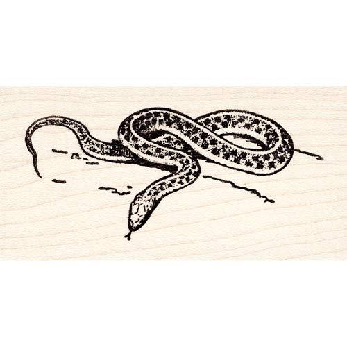 Garter Snake Rubber Stamp