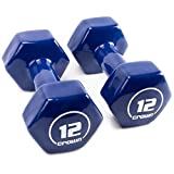 Pair of 12lb Thick Vinyl Coated Body Hex Hand Weights