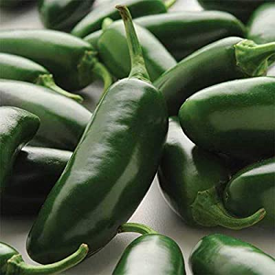 La Bomba Jalapeno F1 Hybrid Hot Pepper Seeds (20 Seed Pack) : Garden & Outdoor