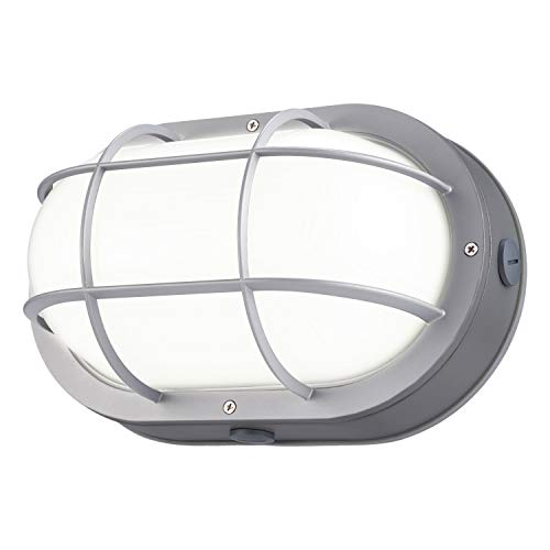 LEONLITE LED Bulkhead Light, 20W (120W Equivalent), Energy Star & ETL Listed, 64 LED Chips, Wet Locations, 5000K Daylight Glow, Silver Finish Outdoor Wall Light, 5 Years Warranty