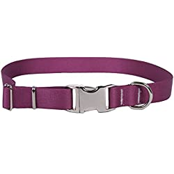 Yellow Dog Design Sterling Solid Plum Dog Collar-Size X-Small-3/8 inch wide and fits neck sizes 8 to 12 inches