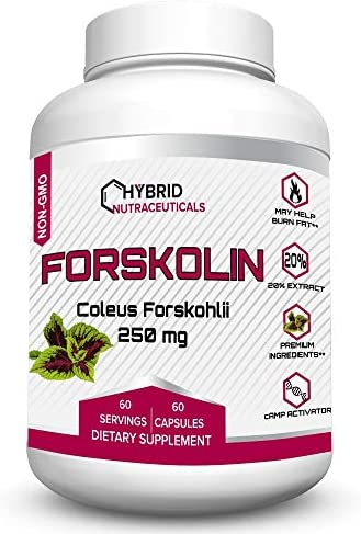 Non-GMO Forskolin for Weight Loss Support, Increase Muscle Mass, Keto Boost Forskolin, Carb Blocker, Belly Fat Burner Pills, Appetite Suppressant, Metabolism Booster – 500mg in 2 Capsules
