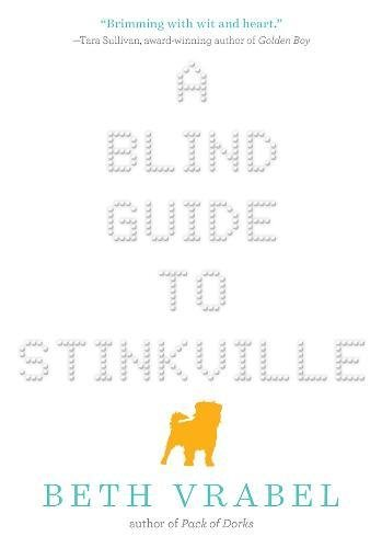 A Blind Guide to Stinkville (The Guy Blind)