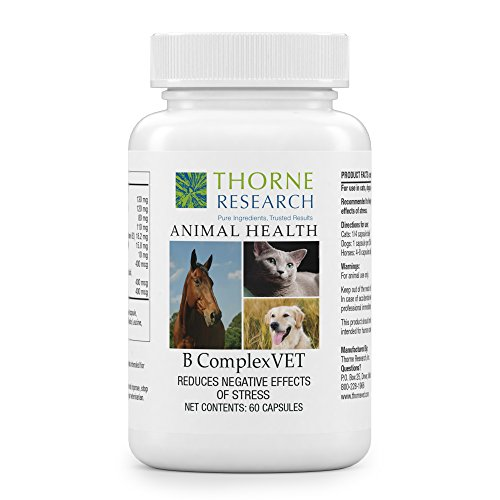 Thorne Research Veterinary - B ComplexVET - Comprehensive B Complex Support - 60 Capsules