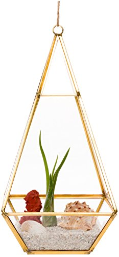 Mindful Design Glass Terrarium - Geometric Large Diamond Desktop Garden Planter (Gold)