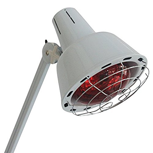 Danyelbeuty single large head Infrared Red Light therapy timer heating lamp