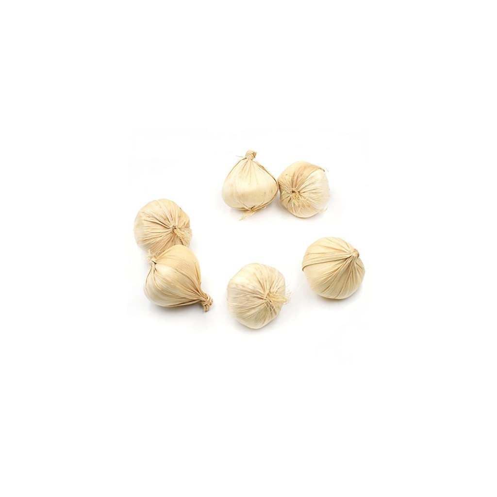 DLUcraft-Fake-Garlic-Artificial-Vegetable-Garlics-Simulation-Lifelike-for-Home-Kitchen-Festival-Decoration-Teaching-Aids-6-PCS