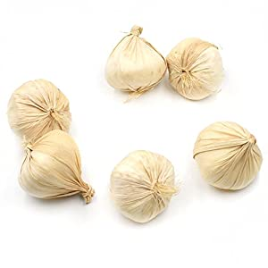 Hagao Fake Garlic Artificial Vegetable Garlics Simulation Lifelike for Home Kitchen Festival Decoration Teaching Aids-6 pcs 4