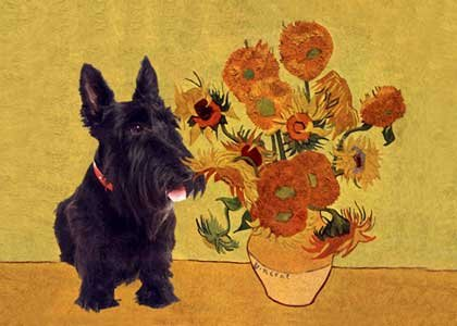 Scottish Terrier Art Print on Canvas - Scottie Dog Art