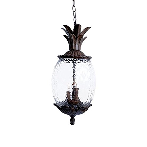 Acclaim 7516BC Lanai Collection 3-Light Outdoor Light Fixture Hanging Lantern, Black Coral by Acclaim