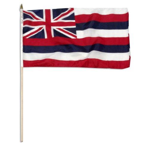 Hawaiian Flag (US Flag Store Hawaii Flag, 12 by 18-Inch)
