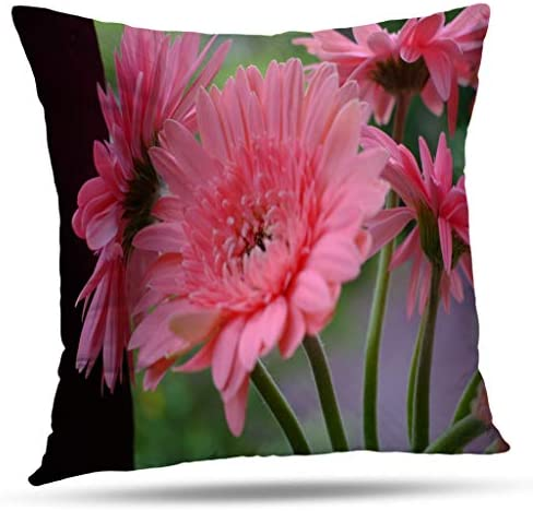 Soopat Decorative Pillow Cover 20 x 20 Inch 2 Sides Printed Pink Gerber Daisies Throw Pillow Cases Decorative Home Decor