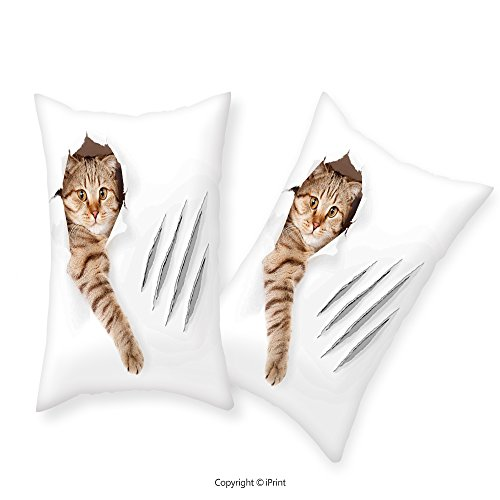 iPrint Premium Cotton Zippered Pillow Cases 2 Pack Animal Funny Cat in Wallpaper Hole with Claw Scratches Playful Kitten Cute Pet Picture Brown White For home decoration (Wicker Furniture Ikea)