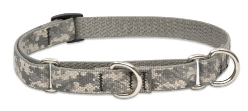 LupinePet 3/4-Inch ACU Martingale Combo Collar for Small to Medium Dogs, 10 to 14-Inch