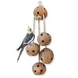 Pet Magasin Hand-Made Heavy Duty Bird Toys for Large Birds Parrot Cage Bite Toys African Grey Macaws Cockatoos 25