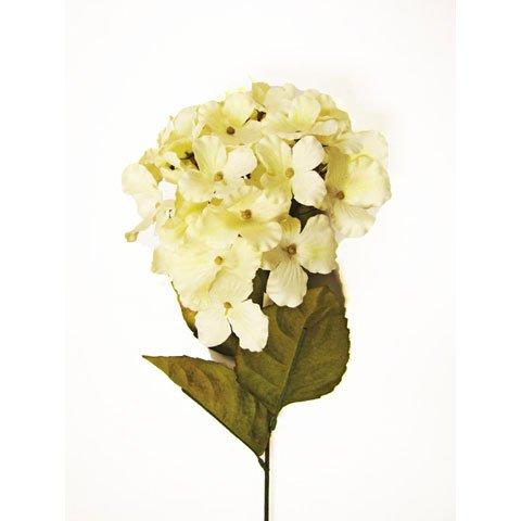 Darice RC-593-29 Everyday Long Stem Hydrangea, 28'', Cream White by Darice