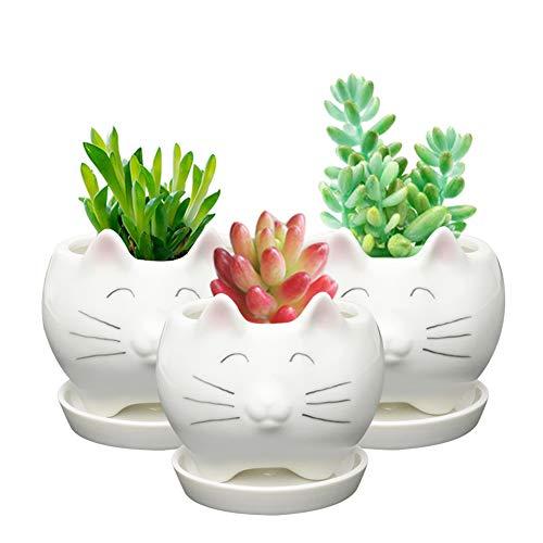 Koolkatkoo Cute Cat Ceramic Succulent Planter Pots with Saucer Porcelain Decorative Flower Pot Unique Planters for Cat Lovers White