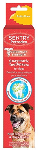 Poultry Dogs Flavor (Sergeant's Petrodex Enzymatic Toothpaste for Dogs - Poultry Flavor, 2.5-Ounce, Pack of 1)