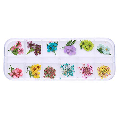 (Mixed 3D Dry Flowers Nail Art Decoration Preserved Flower Nail Stickers Decals (Colour - #14))