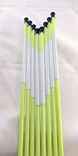 Driveway Marker, Snow Stakes, Plow Stakes, Reflective Tape, 5/16″ Diameter x 48″, Fiberglass, Neon Green, 20-Pack