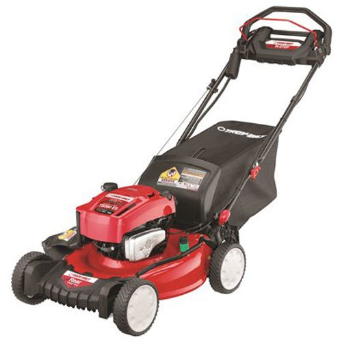 "21"" 3/1 Es Vs Lwn Mower"