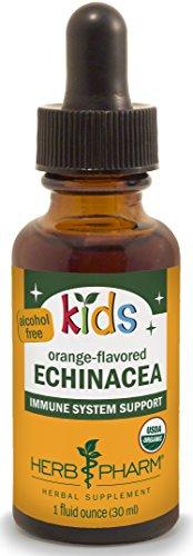 Echinacea Liquid Medicine - 1