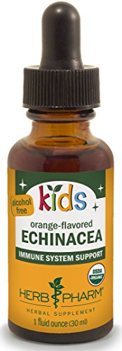 ified-Organic Alcohol-Free Echinacea Glycerite Liquid Extract, 1 Ounce (Organic Alcohol Free Flavor)