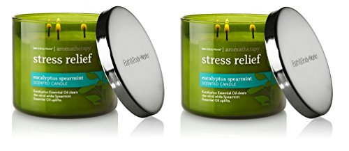 Candle Wick 2 (Bath & Body Works, Aromatherapy Stress Relief 3-Wick Candle, dfrDhp, 2 Pack (Eucalyptus Spearmint))
