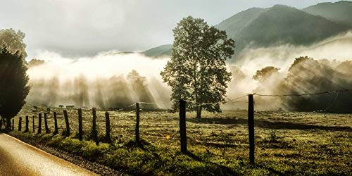 Sunrise in Cades Cove by Danny Head 15