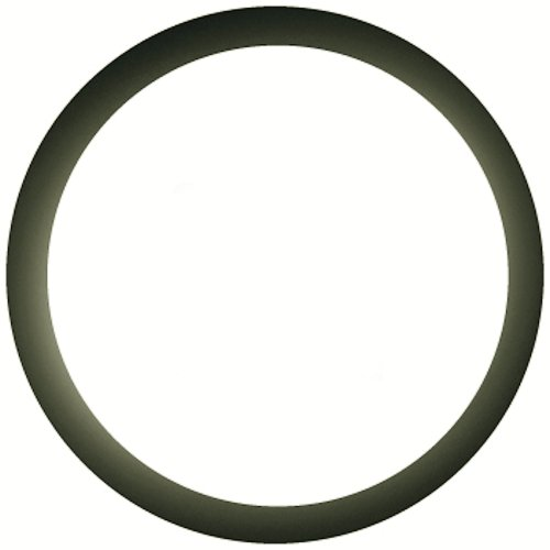 - Stant 27288 Thermostat Seal