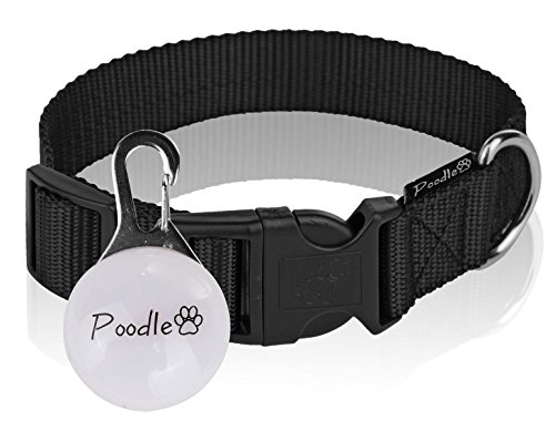 Poodle pet Dog Collar -Adjustable Basic Black Dog Collar - Safe Nylon Fabric - Easy to Snap On - Bonus LED Light Included - 2.5cm Wide - 3 Different Length Options for Small, Medium, or Large (Best Collars For Poodles)