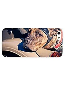 3d Full Wrap Case for iPhone 5/5s Animal American Staffordshire Terrier hjbrhga1544