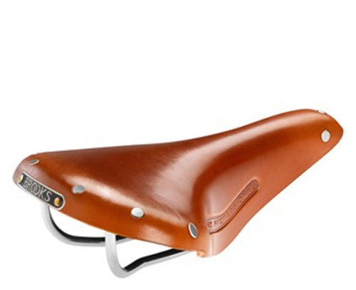 Brooks Saddles Team Professional Classic Bicycle Saddle with Tubular Rivets (Men's, Honey)
