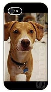 iPhone 5 / 5s Yellow puppy - black plastic case / dog, animals, dogs
