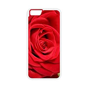 iPhone 6 Plus 5.5 Inch Cell Phone Case White Red Personalized Phone Cases Clear CZOIEQWMXN17601