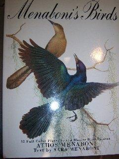 Menaboni's Birds (Sara Painter)