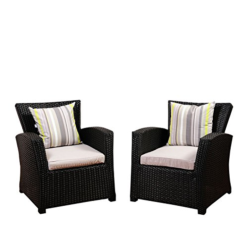Arm Chair - Set of 2