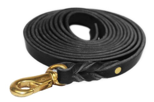 Dean and Tyler Braided Track Dog Leash, Black 40-Feet by 3/4-Inch Width With Handle And Massive Brass Hardware.