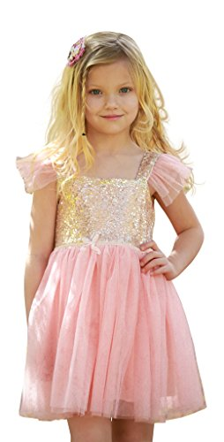 Birthday Dress for Little Girls Princess Ballerina Party, 4Y  tag size 120 (Pink Dresses For Kids)