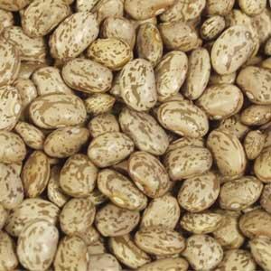 UNFI Organic Pinto Beans, 25 Pound -- 1 each. by UNFI