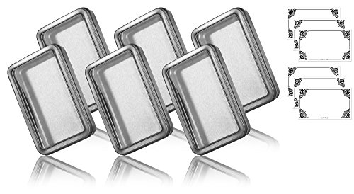 Clear Window Large Hinge Tin Case - 6 PACK (5.5