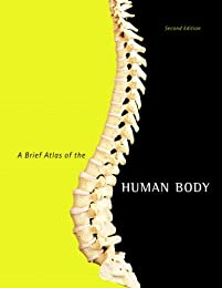 A Brief Atlas of the Human Body