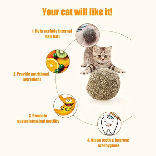 (Walmeck Cat Mint Ball Natural Catnip Teeth Cleaning Playing Chew Toys Pet)