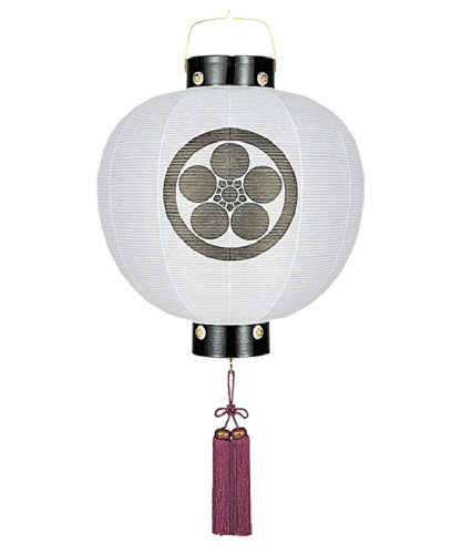盆提灯 門提灯 丸 無地 13号 電気コード式 家紋入れ代込み h308-fz-8324-13-000l B073PVBSQW 13号 電気コード式 13号 電気コード式
