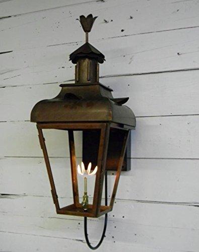 St. James Bird of Paradise Large Copper (Charleston Large Hanging Lantern)